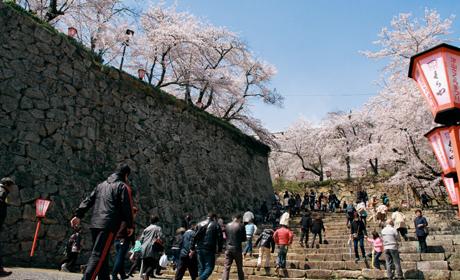 写真:津山城跡(鶴山公園)